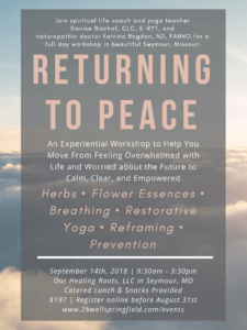 Returning to Peace flyer