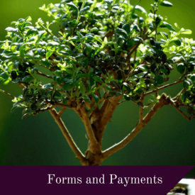 Forms & Payment